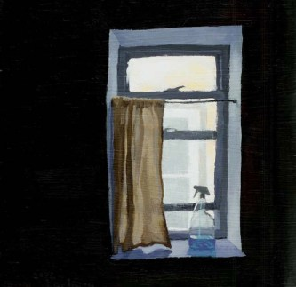 Window with a curtain and a glass cleaner