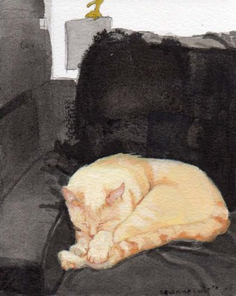 Orange Cat Sleeping on the Couch