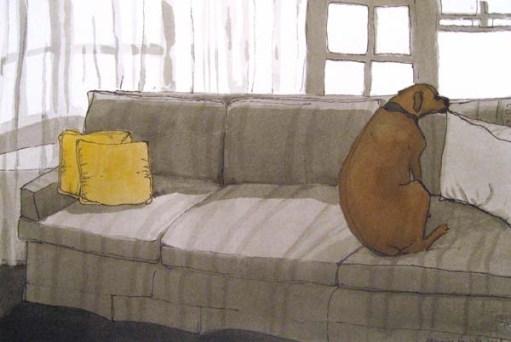Dog lying on the sofa