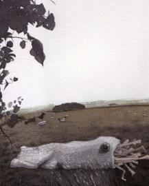 Sock with an Eye in a Field